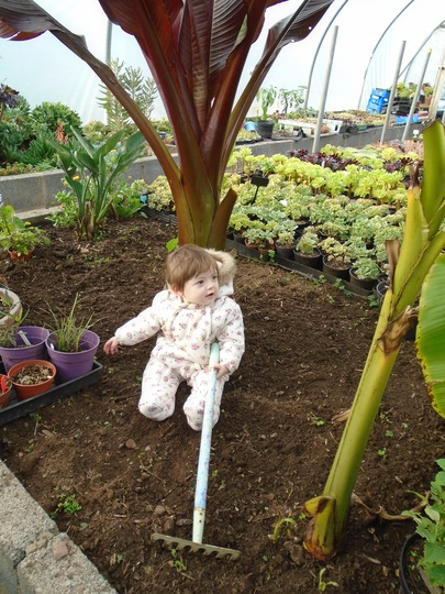 Myla showing off OH ensete..