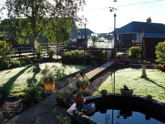 New garden early morning. Very exciting