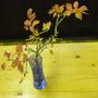 Piece from Prunus Kojo-no-mai