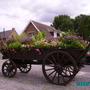 Wagon of flowers  (Wagon of flowers)