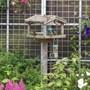 sparrows tea-time