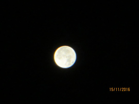 Super Moon Picture taken from garden at 4.30am