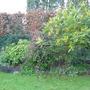 side border back garden