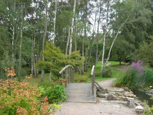 Grounds of Furzey Gardens