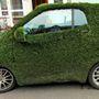Mobile Lawn