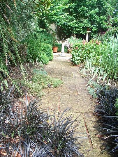 Replanted iris beds