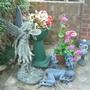 Fairies in my mum and dad's garden