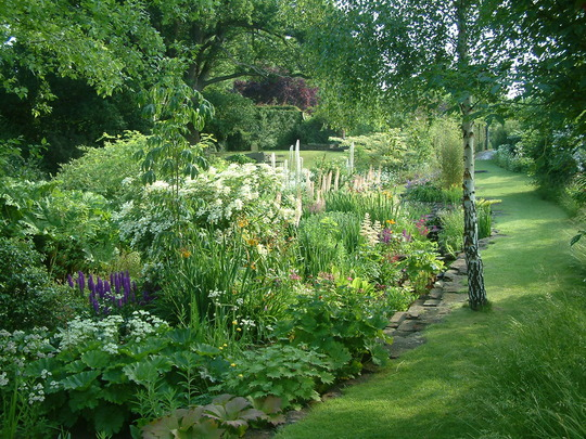 The Bog Garden Stockton Bury
