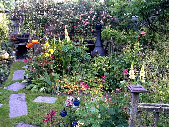 beautiful corner of the garden