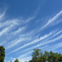 """Sky this morning:  """"mare's tails"""""""