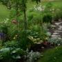 Vermont Garden June