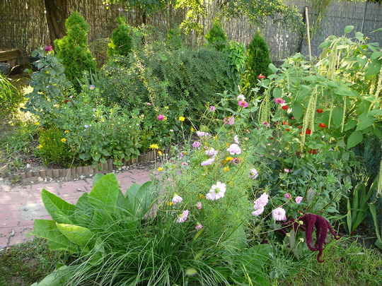 Flower borders at bottom of path.