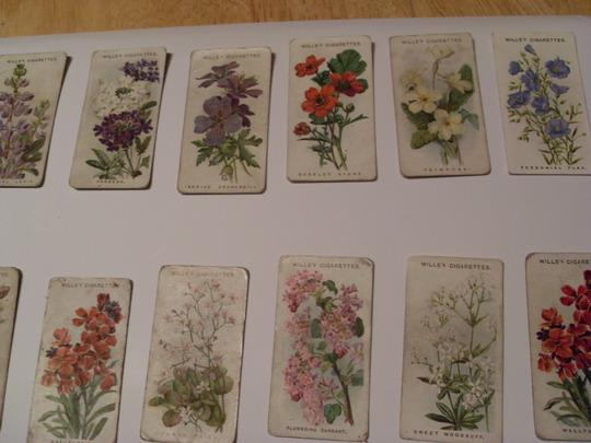 old cigarette cards