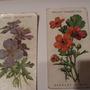 Old_cigerette_cards_1