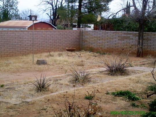 Eastside of Backyard