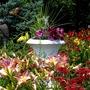 Garden  In Pawlet