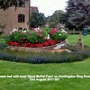 Flower bed with boat 'Spud McPat Face' on Huntingdon Ring Road 2nd August 2017 001