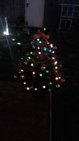 The outside Christmas tree is now decorated..