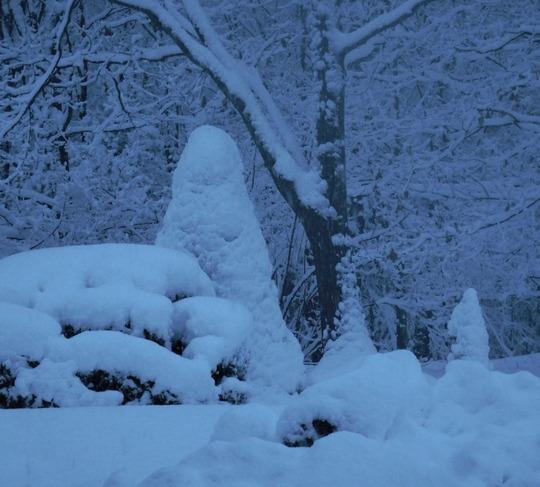 Snow storm- Sargent Hill Vermont