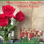 Merry Christmas & Happy New Year GoY