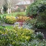 The winter garden at RHS Rosemoor yesterday.