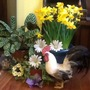 An Easter Display