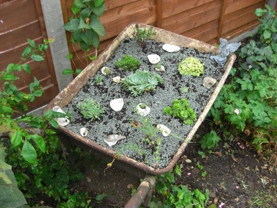 Take one rusty wheelbarrow.....................