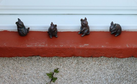 Four Little Mice Capering!
