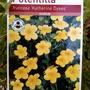 Potentilla fruticosa 'Katherine Dykes'  (Potentilla fruticosa)