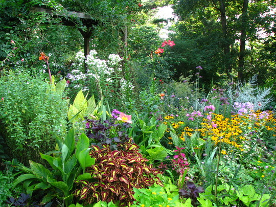 This garden bed is at it's peak...most of the rest are already past their prime, all down hill from here...sob.