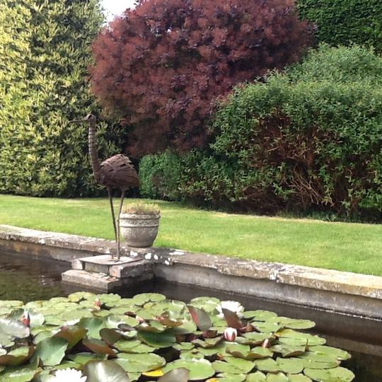 image In a school garden, (Aldro School, Shackleford), Surrey.
