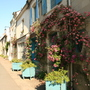 A pretty street in Fontevraud L'Abbaye with the ever present roses everywhere we went!