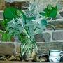 Green arrangement against stone fireplace