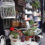 Garden shop, Columbia Road, London