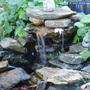 pond_waterfall.jpg