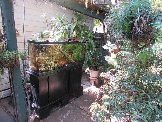 Outdoor aquarium.