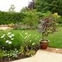View across garden -