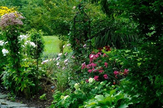 Ouside of Deck garden.