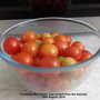 Tomatoes 'Red Robin' just picked from the balcony 25th August 2018 (Solanum lycopersicum (Tomato))