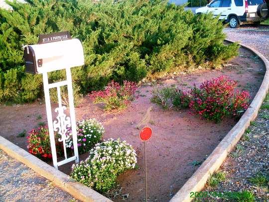 Mailbox Garden