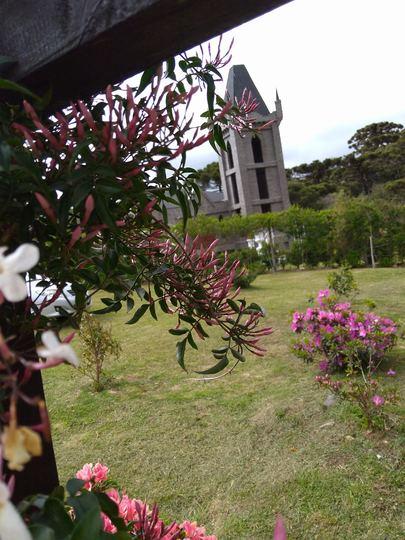 The castle and the Madresselvas (Lonicera caprifolium (Perfoliate Honeysuckle))