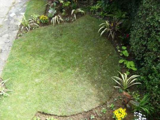 Front garden from upstairs