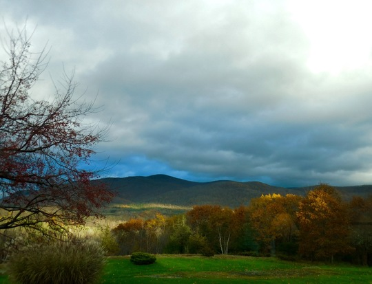 Fall in  VT.