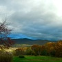 Fall in  VT.