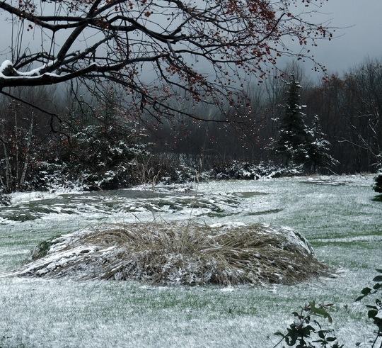 Nov. 13 First snow