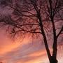Evening sun set