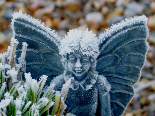 My little frosted Fairy