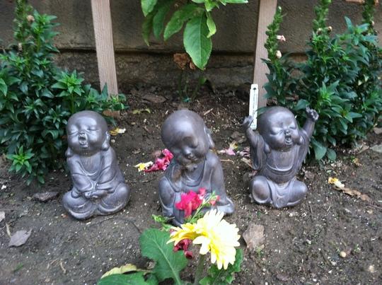 zen buddhas