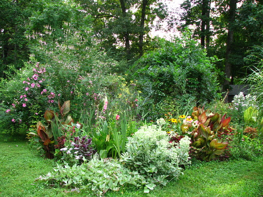 Well Joannie, you wanted to see more of my garden at a distance, so here are a few, now don't laugh...