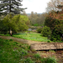 pond view1